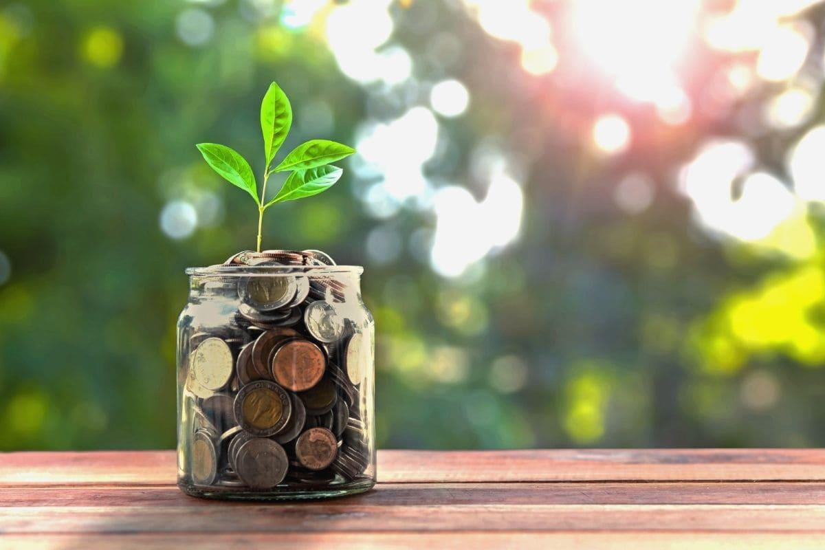 織田慶が広告するAFSに頼らずに投資でお金を稼ぐ方法